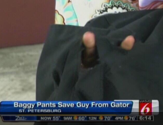 Gator Pants