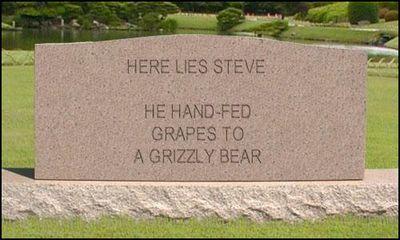 Don't Be Steve