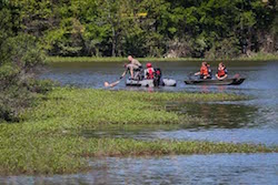 Could be a pond. Does have gators. (Image: Michael Minasi, The Courier)