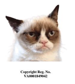 GCL copyright image