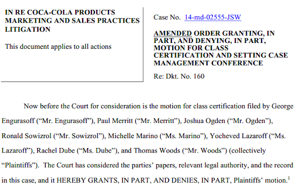 """Now before the Court is the motion for class certification filed by George Engurasoff ('Mr. Engurasoff')"""